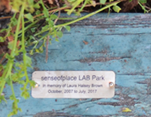 senseofplace LAB secret park, 2017